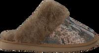 Taupe WARMBAT Tøfler FLURRY  - medium