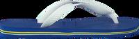 Blå HAVAIANAS Flipflops BRASIL LOGO  - medium