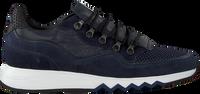 Blå FLORIS VAN BOMMEL Lavskaftede sneakers 16393  - medium