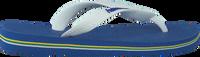 Blå HAVAIANAS Flipflops BRASIL LOGO KIDS  - medium