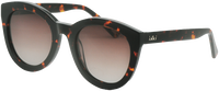 Brune IKKI Solbriller NOLA  - medium