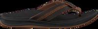 Brune REEF Flipflops ORTHO BOUNCE COAST MEN  - medium