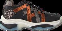 Sorte BRAQEEZ Sneakers BOWIE BALE  - medium