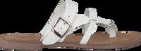 Hvide LAZAMANI Tøfler 75.608  - medium