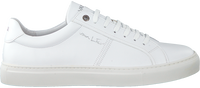 Hvide VAN LIER Lavskaftede sneakers 2011006  - medium